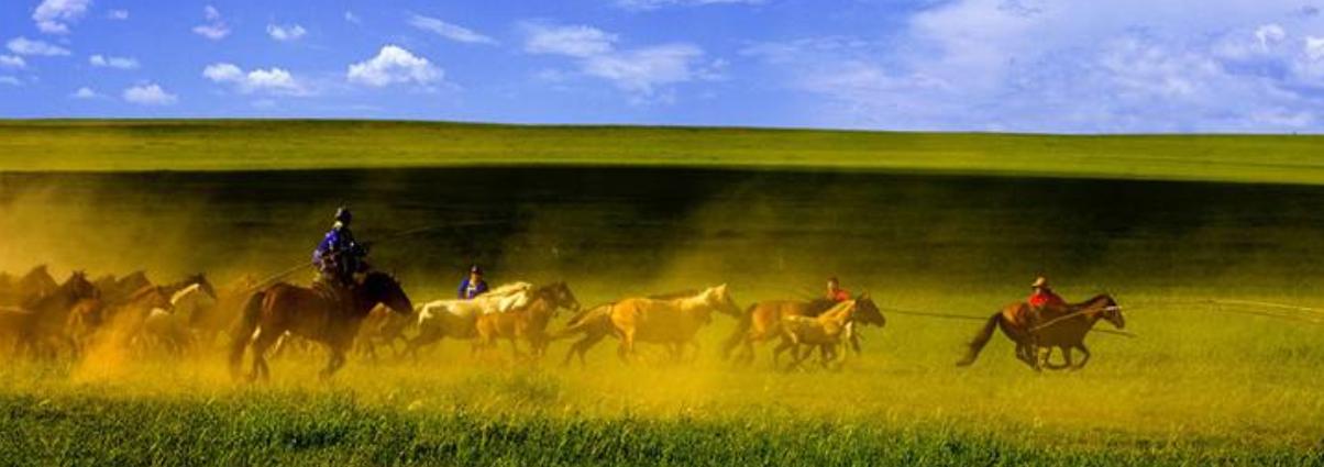18 草原上的盛会